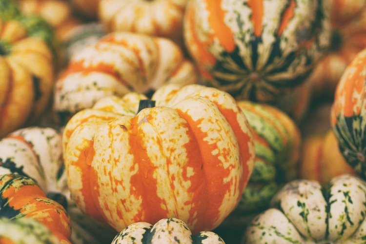 Autumn fruits and vegetables in season. Sydney nutritionist