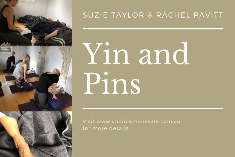Yin & Pins - Health Space Clinics